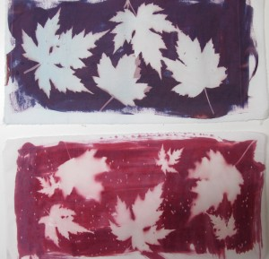 Ghost images of maple leaves on red and purple Inkodye.